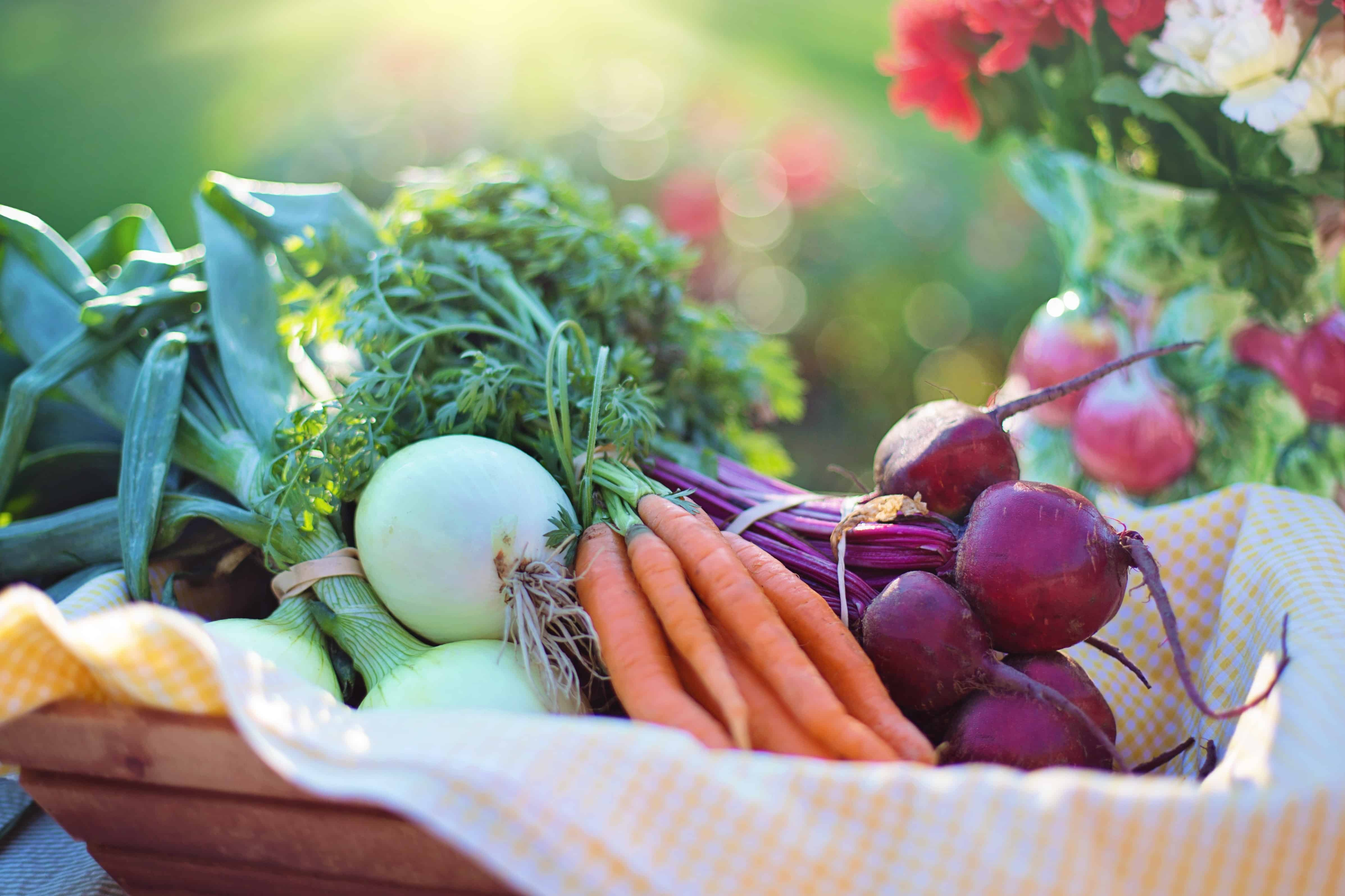, September is Organic Month – 15th September is Organic Day