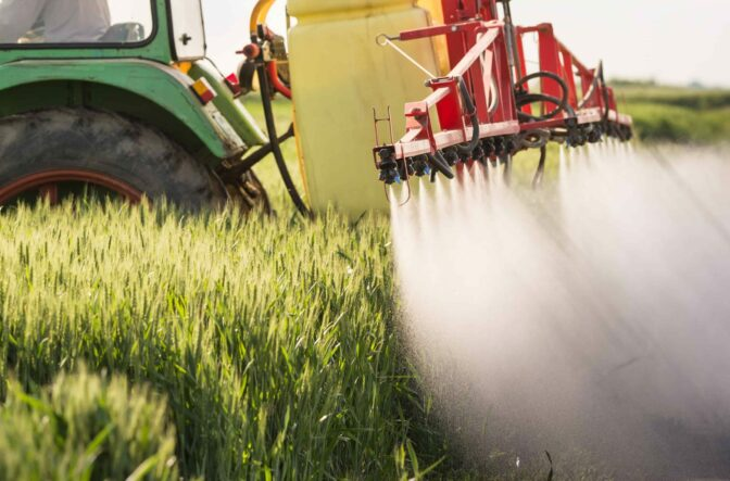 Homefield's Grown Up, Organic Diet Cuts Pesticide Levels in Just 6 Days